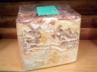 ■カワラ菌糸ブロック 約3500cc 1個